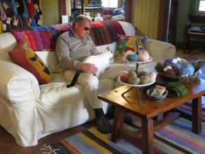 cats yarn shop